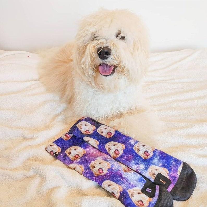 Customized Dog Socks - Put Your Cute Dog on Custom Socks, Dog Lovers, Dog GIft, Dog Personalized, Dog Gift Socks,Fathers Day Gift,Graduatio