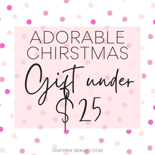 Budget-Friendly gift under $25